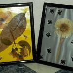 Getrocknete Blumen: günstig und kreativ