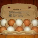 Der Eiertest: Ist das Ei noch frisch?